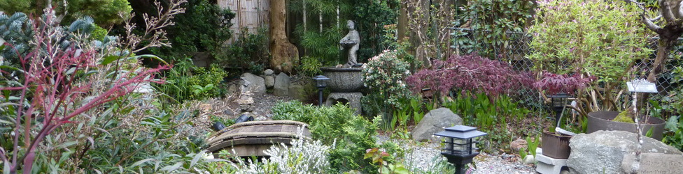 WWB's Japanese Garden - Spring 2015